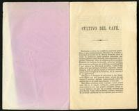 Cultivo de Café (1866)